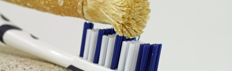 Okousáváním přírodního dřívka si vyčistíte zuby bez plastu a chemie