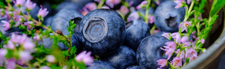 Flavonoidy: Bojují proti rakovině i redukují tvorbu vrásek. Kde všude je najdeme?