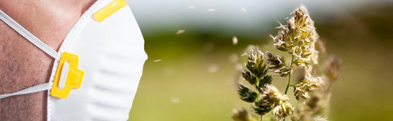 Alergie ukazují na problém uvnitř těla. Jak je léčit a nejenom tlumit?