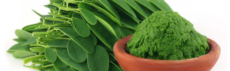 Moringa pomalu nahrazuje chlorellu a zelený ječmen. V čem je tak výjimečná?