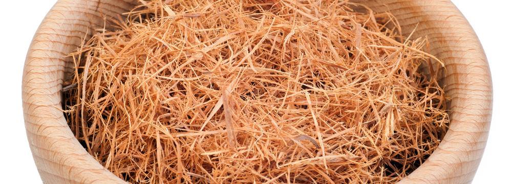 Vilcacora: tajemná tropická liána s léčivými vlastnostmi a stimulant pro tělo i mysl