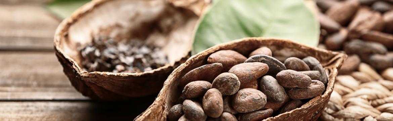 Proč byste měli vždy mít v kabelce kakaové boby?