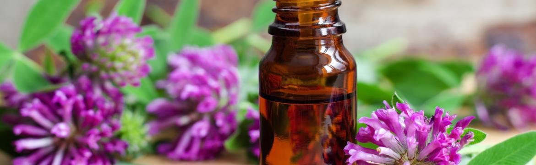 Tajemství fytoestrogenů – zbaví vás návalů i výkyvů nálad při menopauze