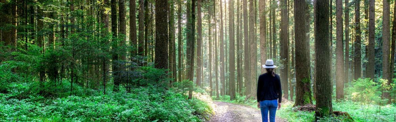 Nedostatek pohybu ovlivňuje vaší psychiku – stačí obyčejná chůze a budete se cítit lépe