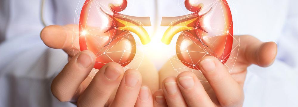 Selhání ledvin brání jen včasné odhalení nemoci – lékaři zvou na bezplatné testování