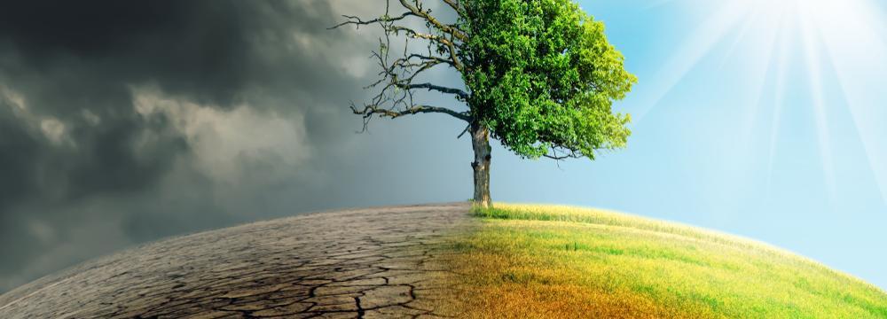 Sucho: věci, kterými může pomoci každý z nás