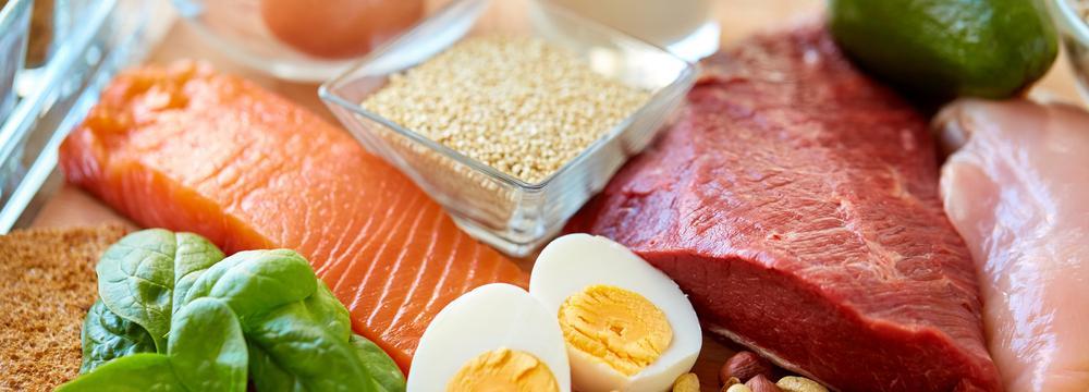 Živočišné vs. rostlinné bílkoviny: základní rozdíly a zásady pro zdraví