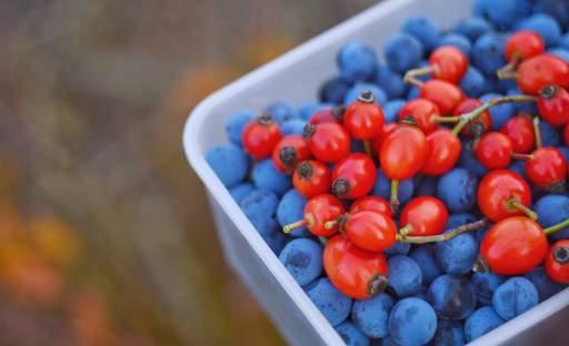 Skolila vás jarní únava? Doplňte si zásoby vitamínu C