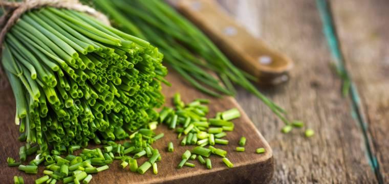 Pažitka: její využití v kuchyni a vliv na zdraví