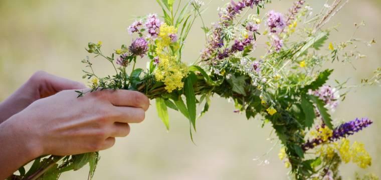Kouzlo Svatojánské noci: vyrazte dle tradice na sběr bylinek