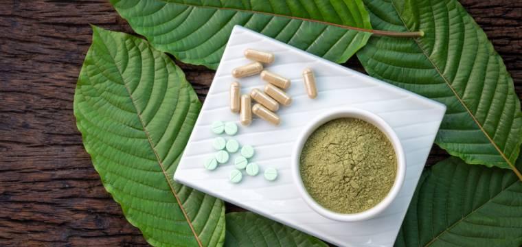KRATOM: léčivá bylina nebo nebezpečná droga?