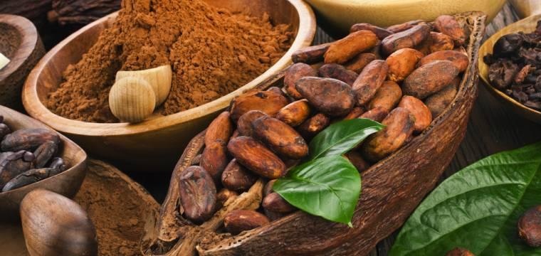 Kakao, káva a další potraviny z udržitelných zdrojů – naučte se správně si vybírat