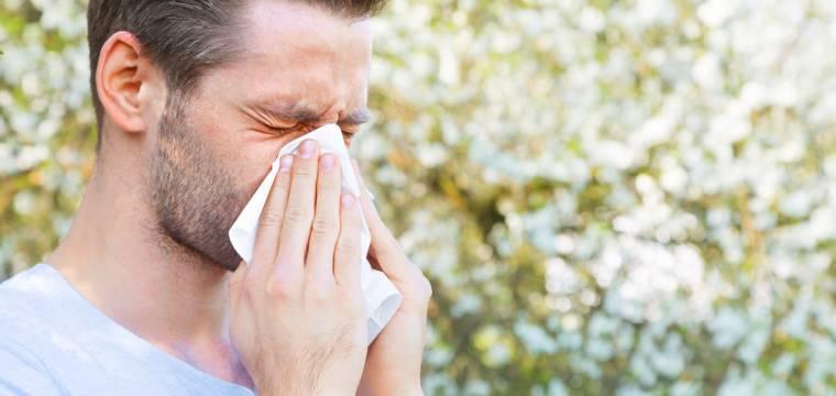 Pylová sezóna začíná: Jak se alergie na pyl projevuje a kdo by si měl dávat pozor?