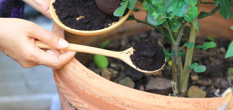 Poradíme, jak využít lógr z turka, slupku od ovoce nebo vymačkaný citrón