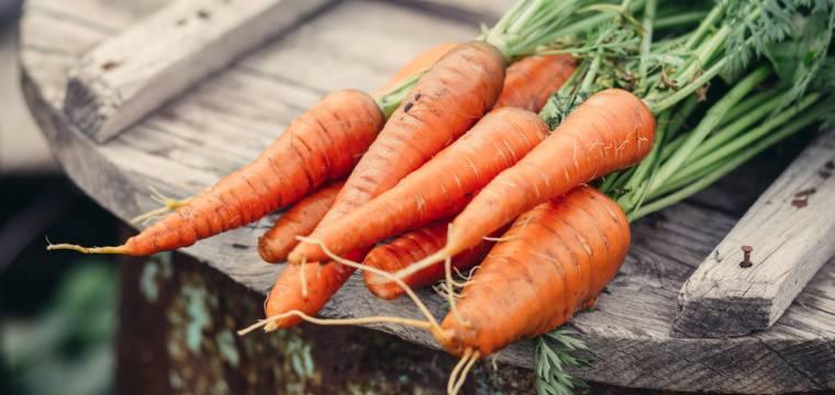 Pravda o biopotravinách: Jaké potraviny stojí za to kupovat v bio kvalitě?