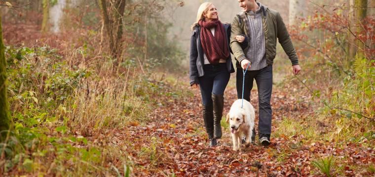 Chůze je zdravý pohyb. Jak si ji zpříjemnit a udělat z ní zábavnou aktivitu?
