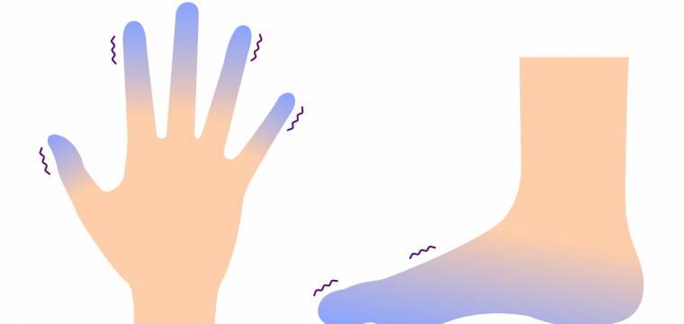Studené ruce, brnění, křeče: Jak zlepšit krevní oběh v dolních i horních končetinách?
