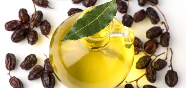 Neemová kosmetika – to nejlepší pro vaši pleť z posvátného stromu Nimba