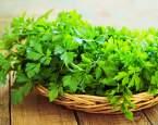 Petrželka: vliv na zdraví a využití v kuchyni