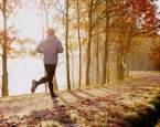 Krása podzimního výběhu aneb jak si užít podzim naplno